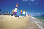 Orlando, Daytona, and/or Ft. Lauderdale, Florida 5 Days/4 Nights for only $79 + $100 Restaurant.com Card